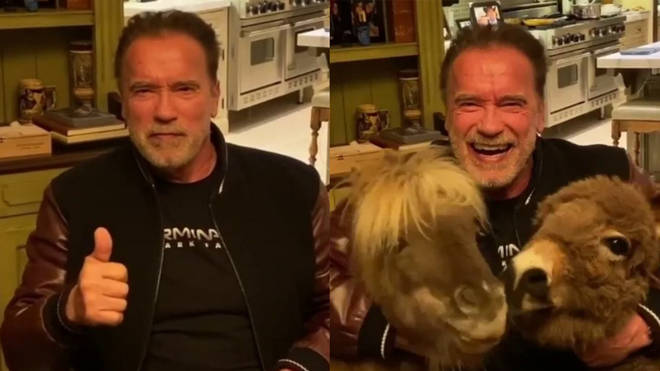 Arnold Schwarzenegger told fans to stay at home if they're a certain age