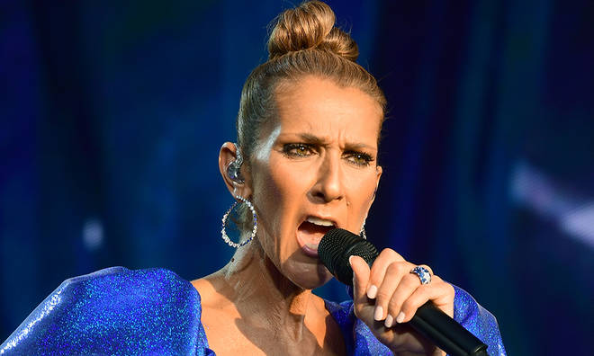 Celine Dion has gone on to have a huge career since her Eurovision win