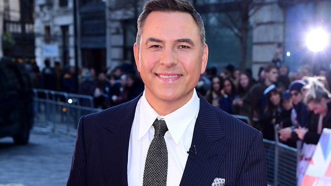 David Walliams' career also includes books and TV