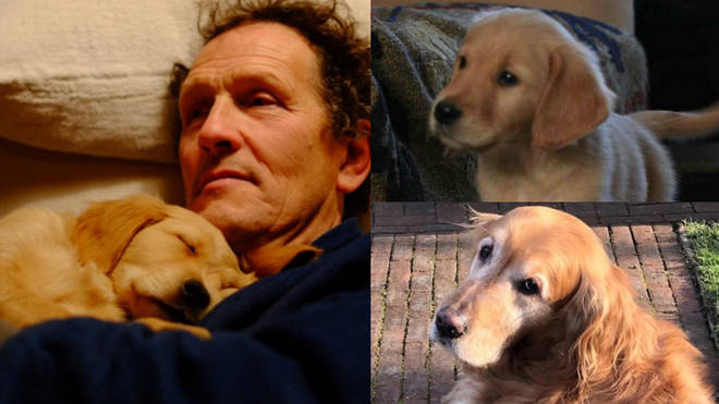 Monty Don and photos of Nigel