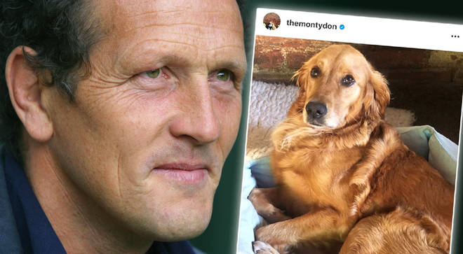 Monty Don's dog Nellie has a 'very near miss' in freak accident while chasing stick