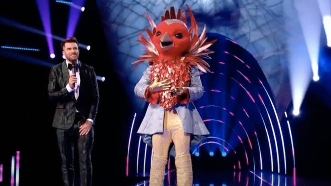 The Masked Singer UK: Who is Robin? Clues and theories for series 2