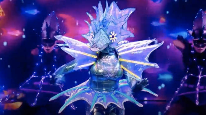 The Masked Singer series 2: Seahorse clues