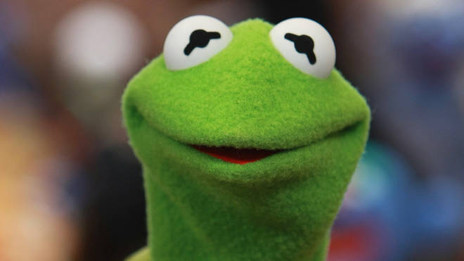 Kermit the Frog as he looked in 2008