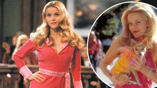 Legally Blonde 3: UK release date, cast and what we know so far...