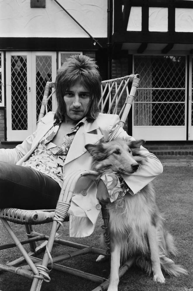 Rod's Dog
