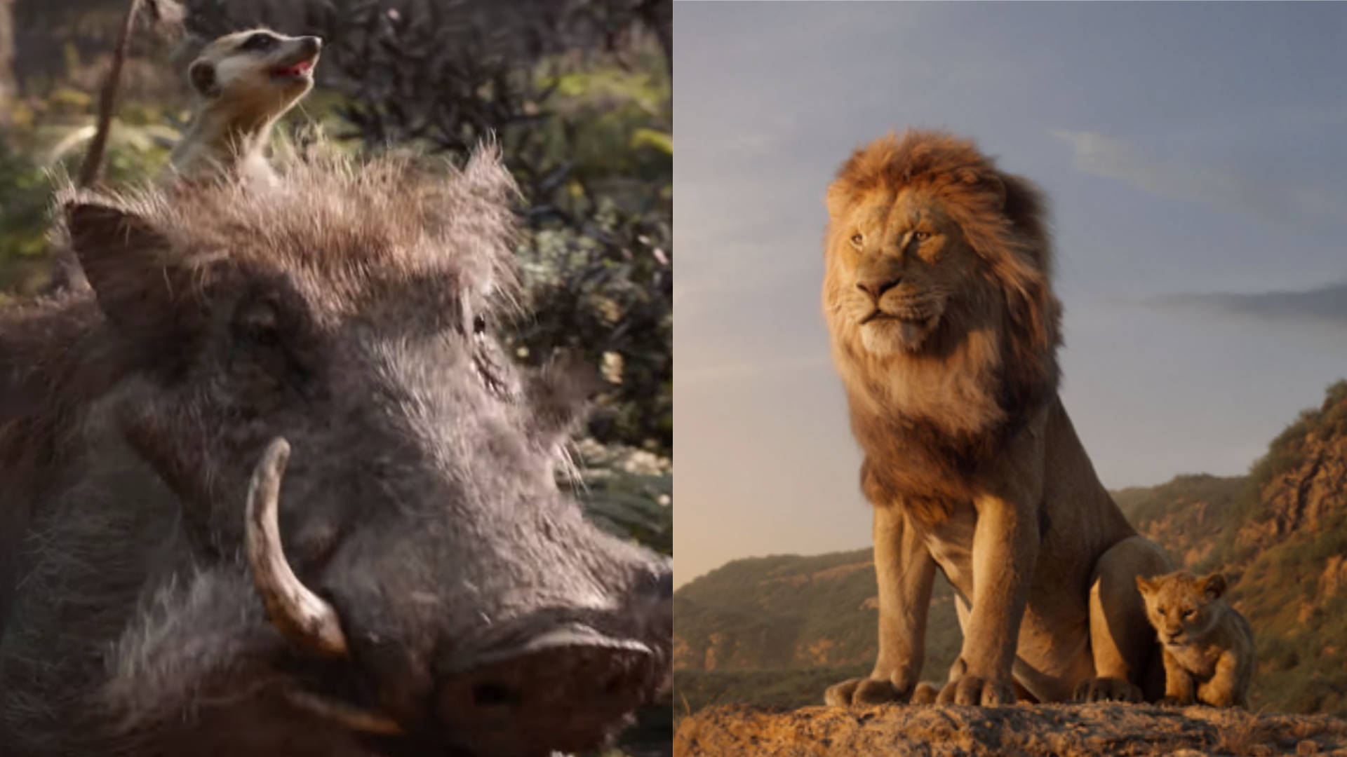 The Lion King Trailer Watch The Stunning New Trailer