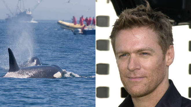 Bryan Adams used his body as a human shield to a protect whale