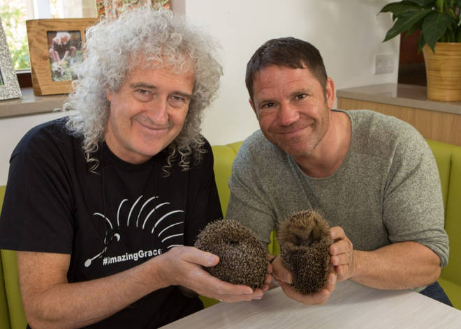Brian May and Steve Backshall appear in Channel 5's Saving Britain's Hedgehogs