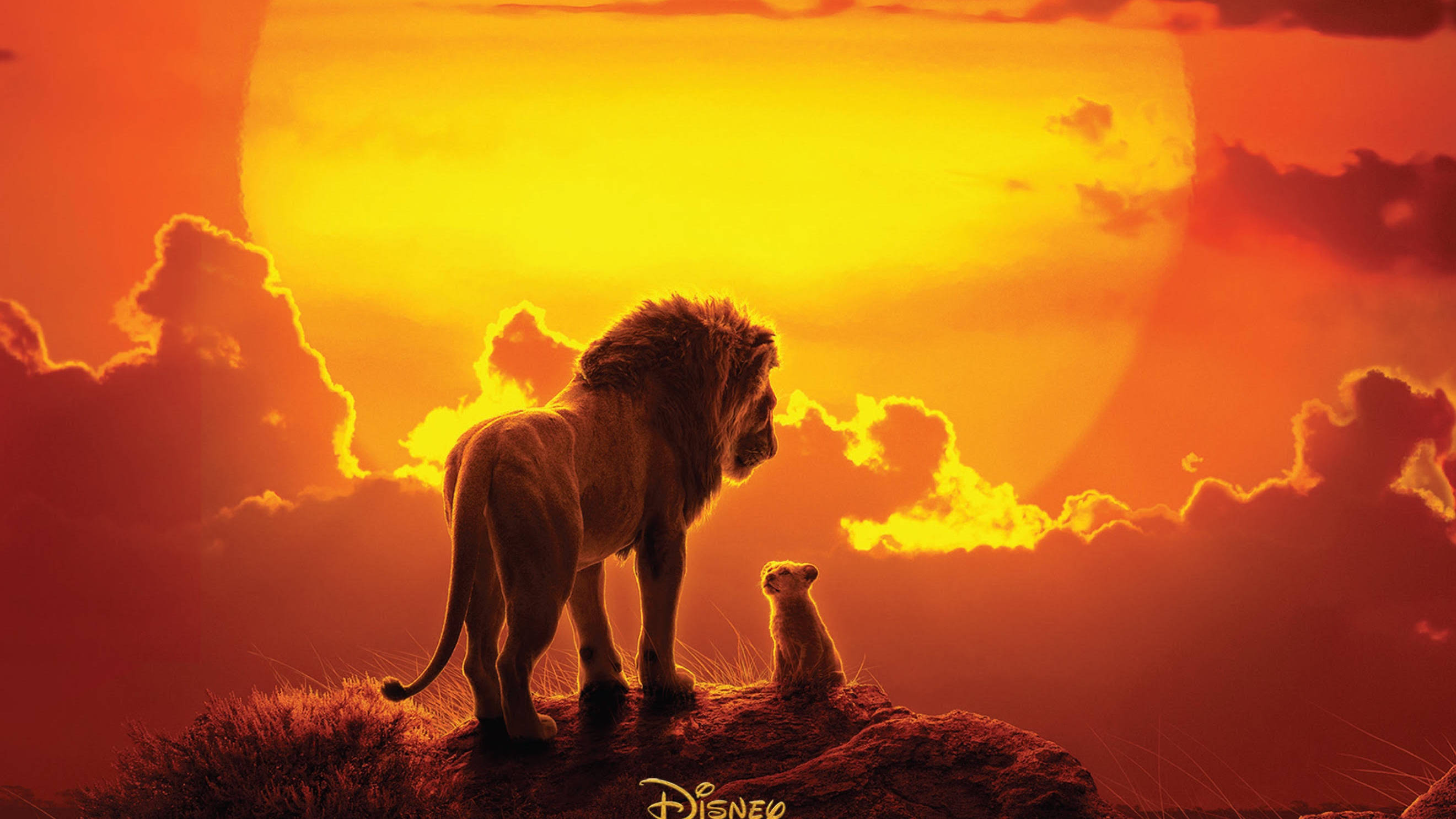 The Lion King soundtrack: Full tracklisting for 2019 remake