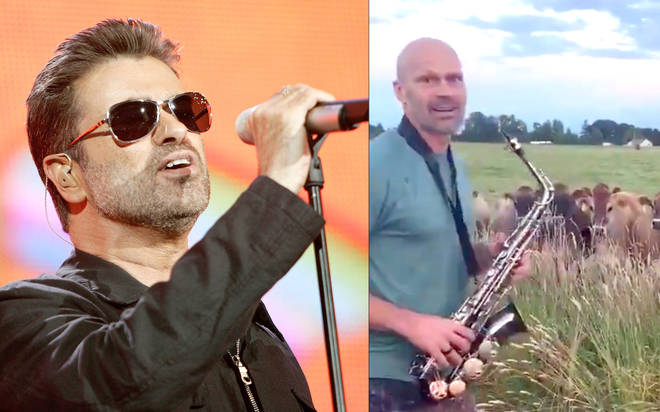 George Michael's Careless Whisper stuns herd of cows after saxophone tribute