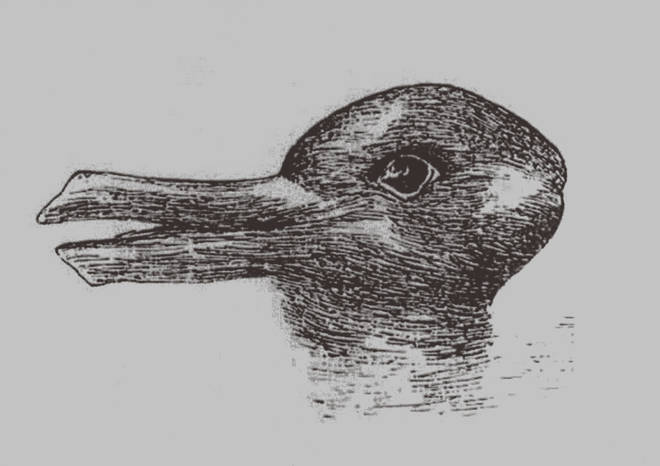 Can you see a duck or a rabbit?