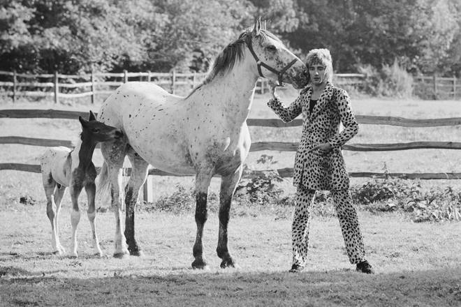 Rod Stewart posing in a leopard skin suit with a horse and foal at his home in Old Windsor, 1971