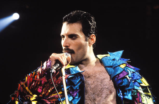 The box-set will be titled Never Boring and include a curation of Freddie's music, spoken words, and video projects